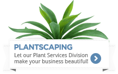 Plant Services in Baton Rouge, LA